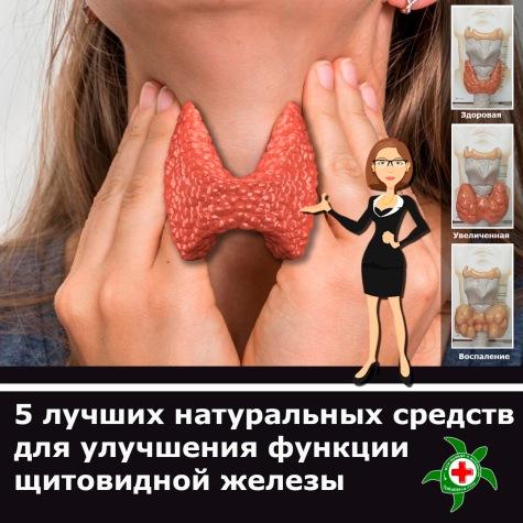 001 щитовидная железа